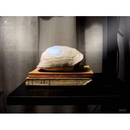 Turtle shell in white ceramic 17cm (small