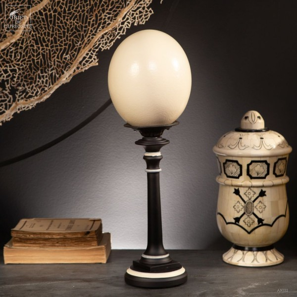 Egg of ostrich on black and ivory base