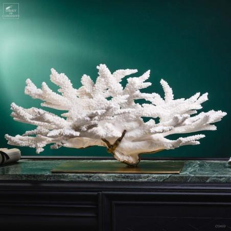 ACROPORA FLORIDA branch coral on brass base