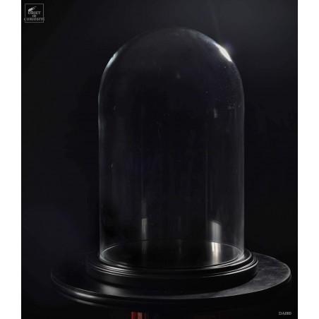 Glass dome on black wood base GM