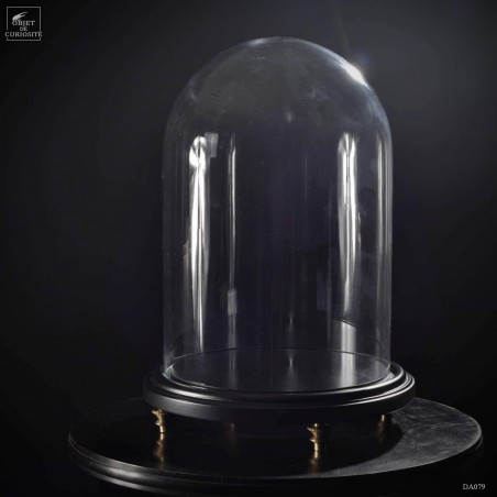 Glass dome on black wood base MM