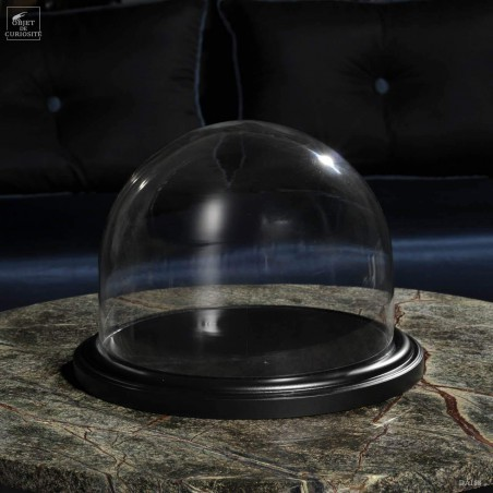 Glass globe on a wooden base
