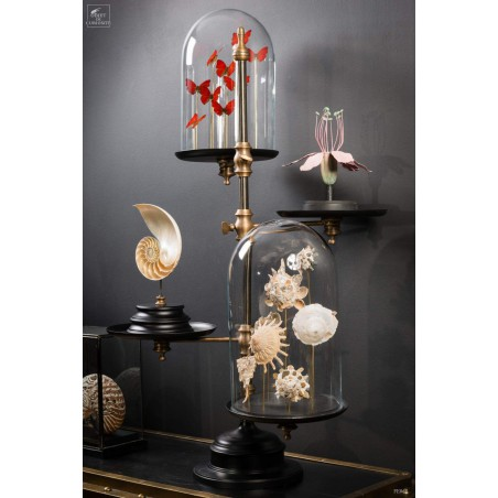 Glass bells display stand