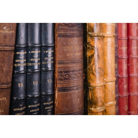 Set of 1 meter of big leather antic books