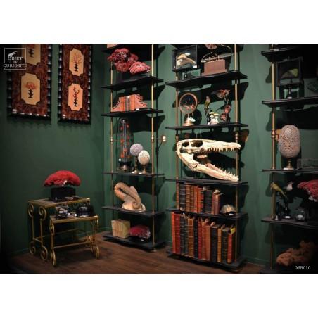 Rack - 3 shelves